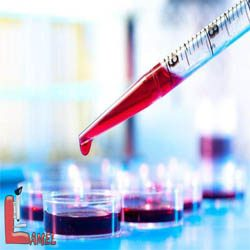 آزمایش های دوران بارداری را بشناسیم/ آزمایش های مهم دوران بارداری
