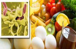 عفونت با سالمونلا /علت و درمان/ هر آنچه باید در مورد باکتری سالمونلا بدانیم